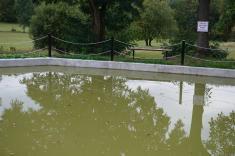 oprava rybníka na návsi